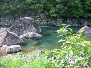 増水した日和佐川「くじら岩」と「ひそやかな潜水橋」
